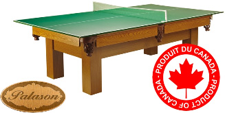 5' x 9' Palason Table Tennis Conversion Top