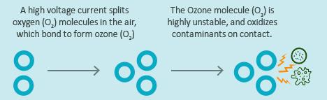 Del Ozone Eclipse Info